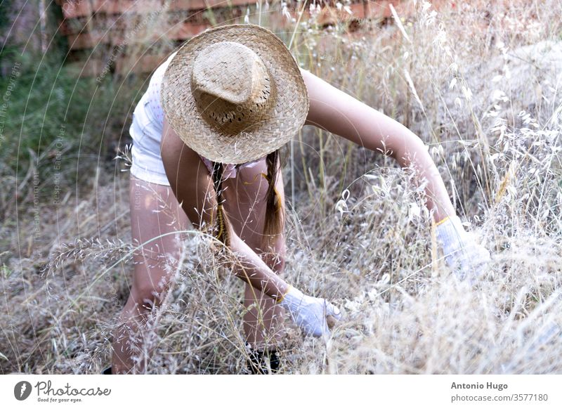 Blonde country girl with braids in her hair and a straw hat. Cutting dry grass with a sickle. Rural scene. rural woman countryside farming work field green