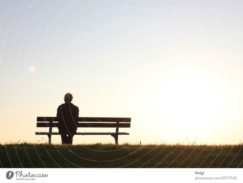 Silhouette of a senior citizen sitting on a bench in the evening sun and looking into the distance Man Senior citizen Bench Evening sun Sit Sunlight Back-light