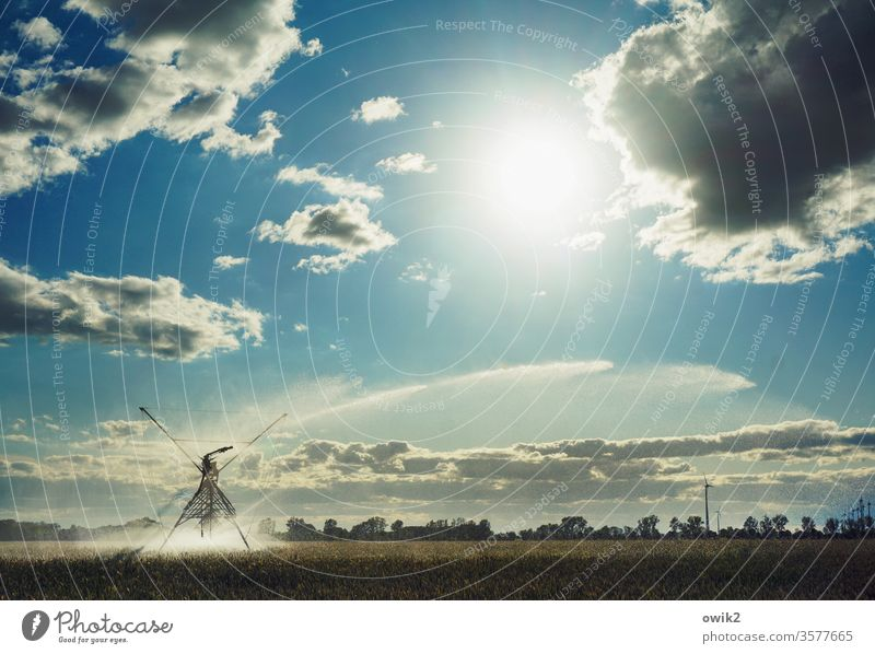rainmaker Irrigation Agriculture Field acre Horizon Sky Clouds Water Sprinkler system Landscape Exterior shot Environment Colour photo Blue Nature green
