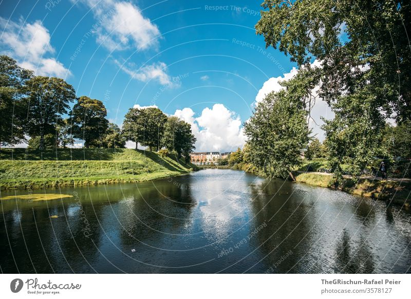 Park - trees at the waterfront Denmark Sky Clouds Water Copenhagen Trees in the lake green Summer Blue Exterior shot Wide angle Nature