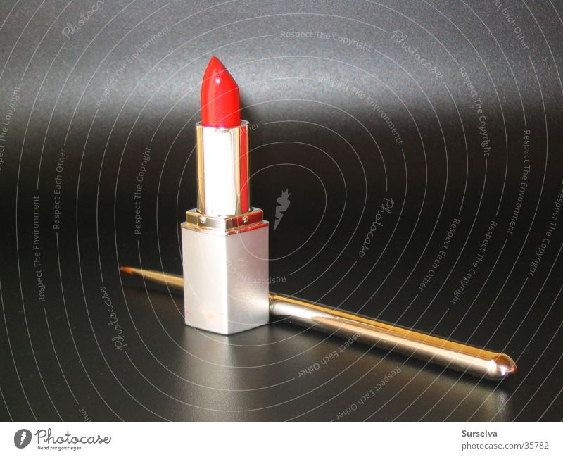Red Lips Luxury Make-up Lipstick Cosmetics