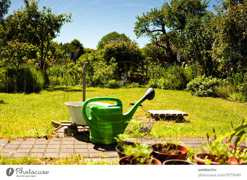 Watering can in allotment garden Branch tree flowers Relaxation holidays Garden Grass Sky Garden allotments Deserted Nature Plant Lawn tranquillity Garden plot