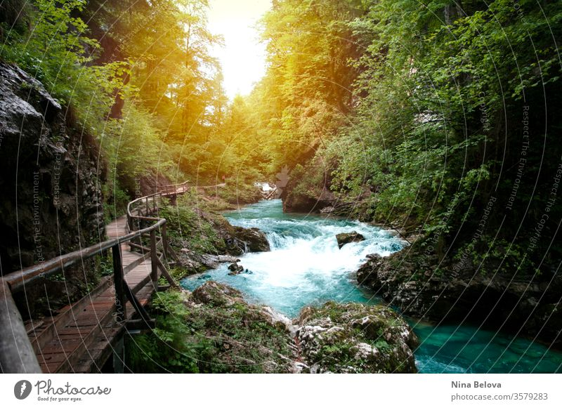 Beautiful view of mountain river, sun light through the trees, traveling in Slovenia, Vintgar. Hiking in Europe. landscape water triglav stream outdoor green