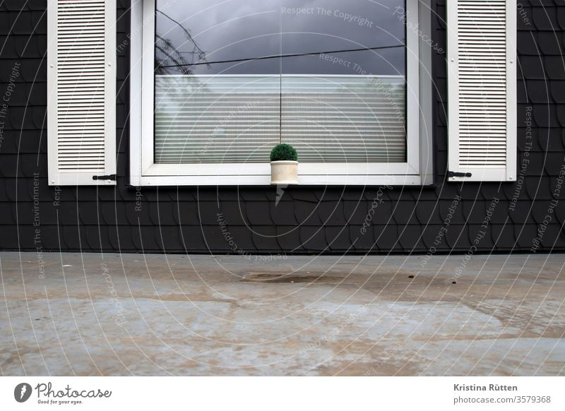 window with flowerpot above the canopy Window windowsill Flowerpot Plant slate facade slate cladding shutters Slate shale shingles Roller blind roller blind