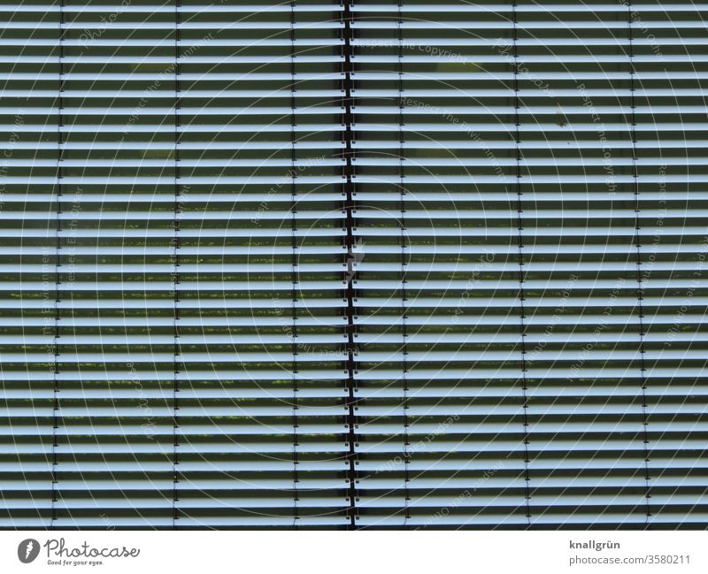 Two closed silver-coloured blinds next to each other Venetian blinds Screening Line Structures and shapes too Closed hide sb./sth. level Stripe Pattern