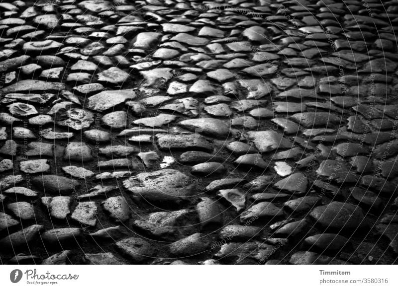 Old stones, old street in old town Floor covering Street Ground Uneven smooth Light Shadow Contrast Black & white photo conceit Lanes & trails Deserted