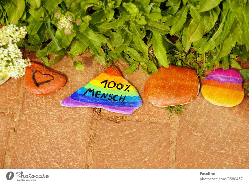 100 % human - or colourfully painted stones on a path variegated creatively Colour Colour photo Multicoloured motley green Red Blue Yellow Orange Close-up