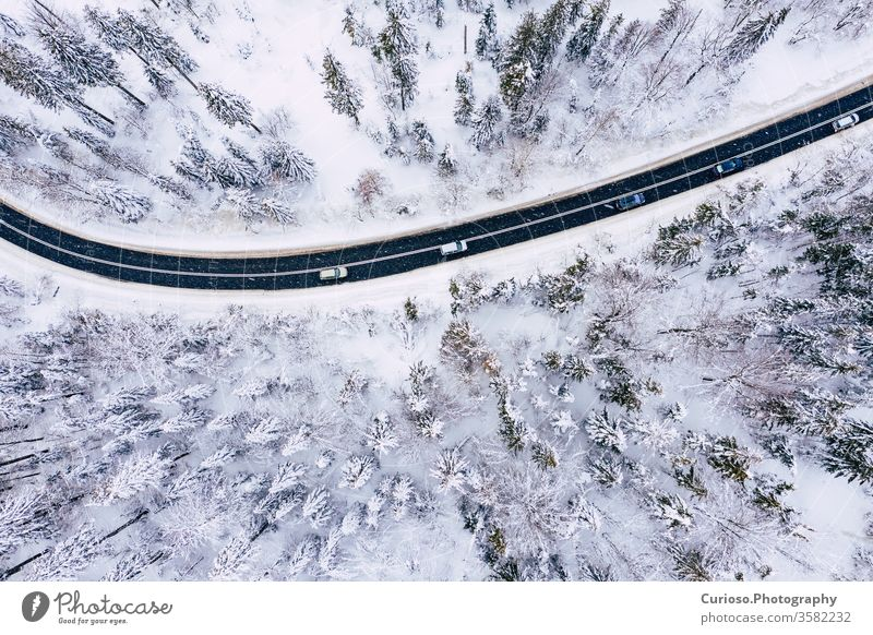 Curvy windy road in snow covered forest, top down aerial view. Winter landscape. winter drone above nature snowy white tree background season ice scenic cold