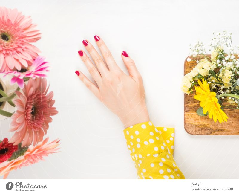 Beautiful female hand with red nails on white beauty woman care skin manicure pink polish wellness yellow flowers beautiful body spa massage therapy wellbeing