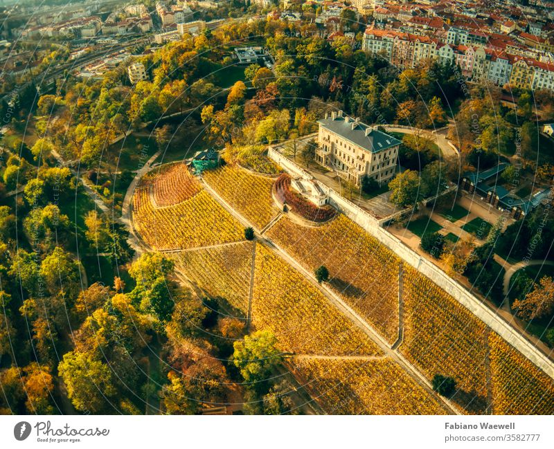 aerial view of Grebovka park in Prague prague green building grass historical europa sky modern nature calm quiet public tv tower tram peaceful winter traffic