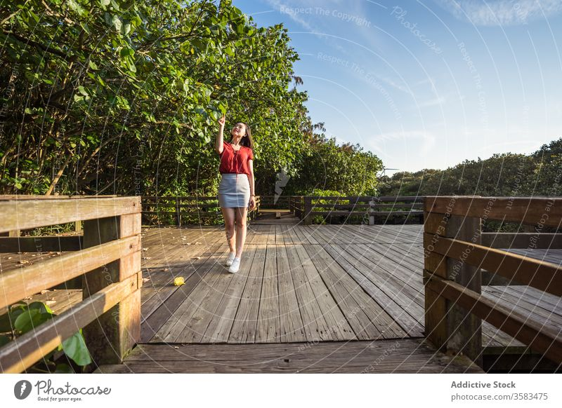 Young traveler standing on wooden bridge over forest tourist tourism picturesque wanderlust harmony woodland touch hair greenery vacation peaceful journey