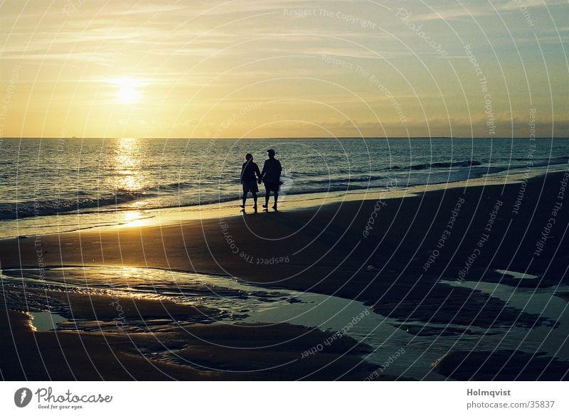beach walk Ocean Sunset Sunrise Beach Calm Amrum Romance Relaxation Trust Coast North Sea Island Peaceful