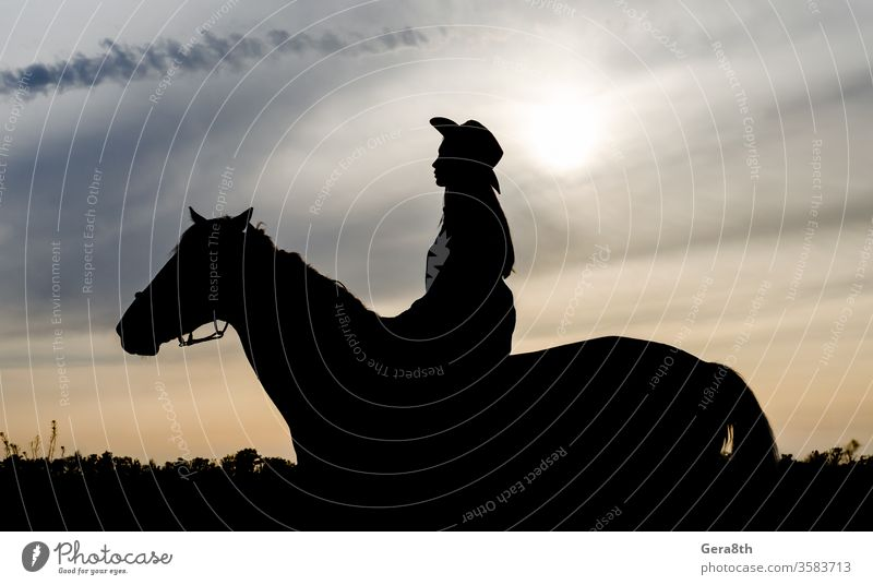 silhouette of a young girl with a hat on a horse on the background of the sunset sky animal black clouds contour country country style cowboy evening