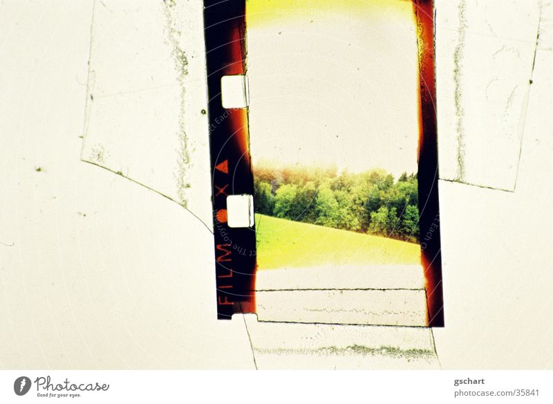 Green Vacation & Travel Yellow Forest Meadow Film Hill Overexposure Canton Appenzell Super 8