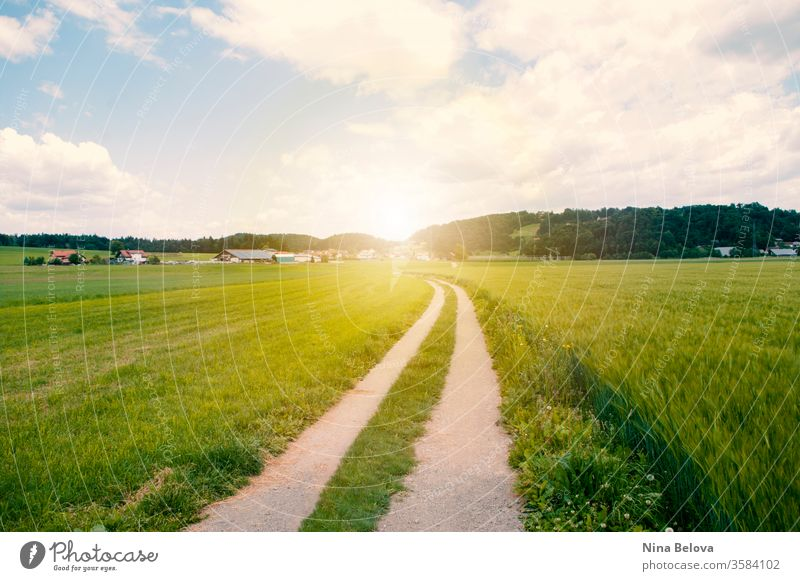 Road goes through valley, green field, the hills at the sunset sky landscape countryside road sunlight idyllic clouds agriculture meadow rural view scenery dirt