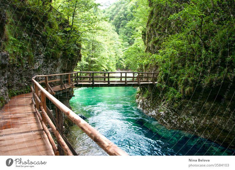 Wooden bridge above mountain river, wild nature landscape. Clean water. travel vintgar triglav stream outdoor green forest slovenia europe summer gorge