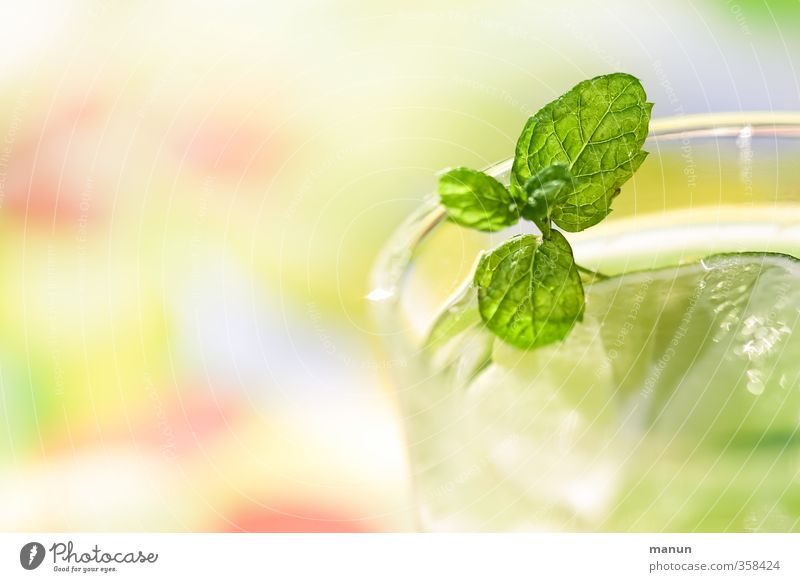 take a drink! Fruit Herbs and spices Slices of lime Lemon Balm Nutrition Beverage Cold drink Drinking water Lemonade Alcoholic drinks Sparkling wine Prosecco