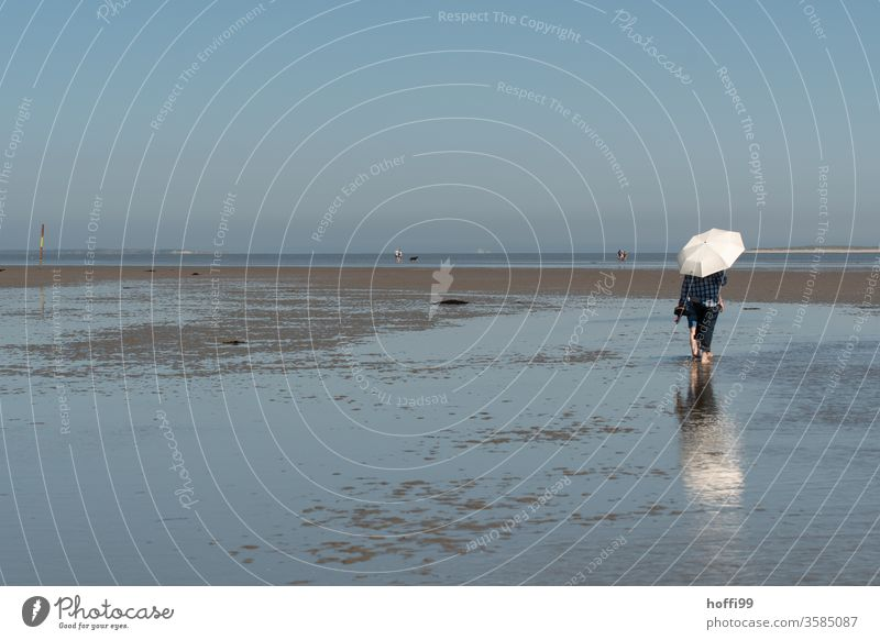 Hiking in the mudflats at low tide with parasol Umbrellas & Shades Sunshade Going 1 Human being Mud flats Ocean Movement Bright Maritime Wet North Sea Coast