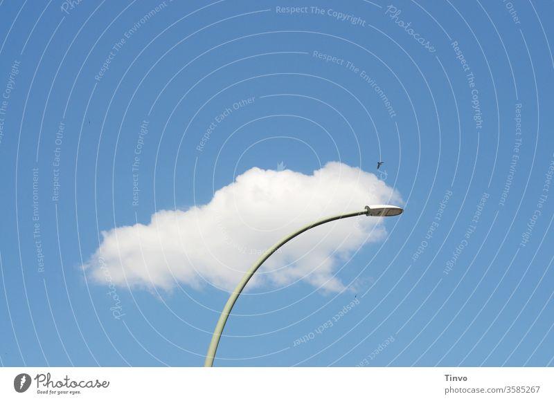 Janz Berlin is a cloud streetlamp Street lighting Sky birds Deserted Beautiful weather Worm's-eye view
