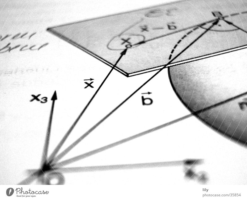 loving math #1 Mathematics School books Science & Research advanced course Black & white photo X vectors factors tangent plane Sphere Level Analytical geometry