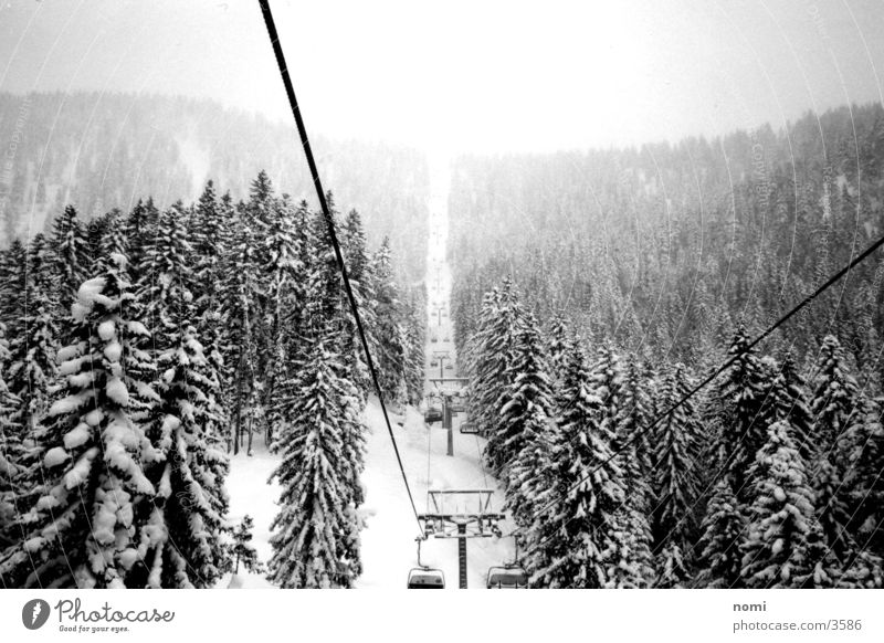 snowy landscape Fir tree Snow Elevator Mountain Contrast