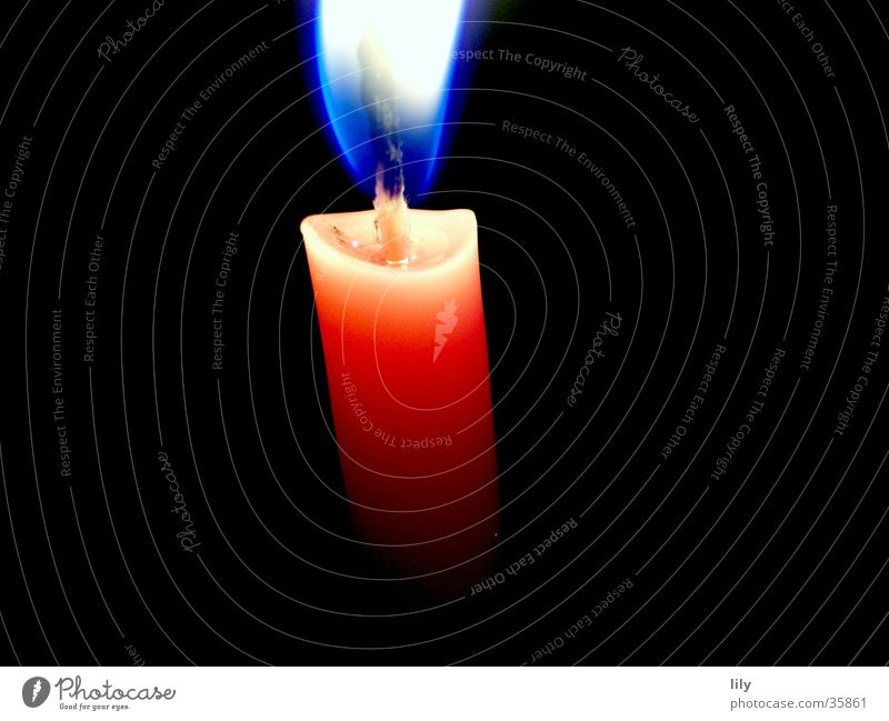 Christmas & Advent Blue Calm Warmth Pink Blaze Candle Kitsch Physics Hot Flame Peaceful