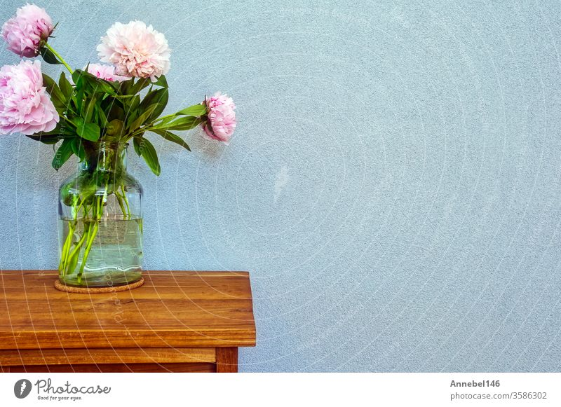 Pink peonies in glass vase on wooden table, romantic design with space for text modern interior flower background retro music wedding fashion abstract floral