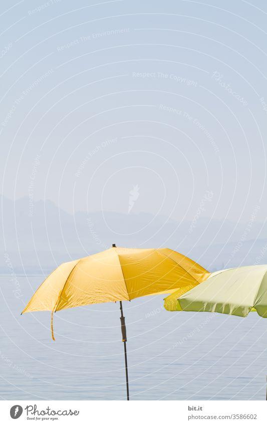 Umbrellas for the centipedes, by the Swabian Sea. Umbrellas & Shades Sun Summer Summer vacation Summery Sunshade sun protection UV radiation Yellow green Blue