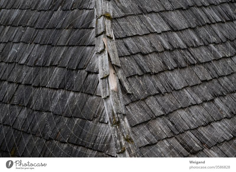 Wooden roof Crime thriller somber Old Historic Roof shingles Celts first Rainy weather conceit Gray brick