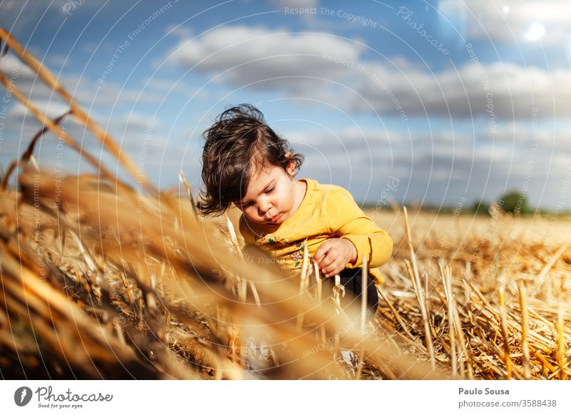 Little girl playing in the fields Summer Summer vacation Playing Child Children's game Curiosity Innocent Vacation & Travel Exterior shot Colour photo Joy