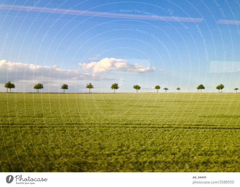 Landscape from the train huts Field acre Train Window Driving Sky Clouds swift reflection Nature Agriculture Deserted Colour photo Railroad Track Weather Avenue
