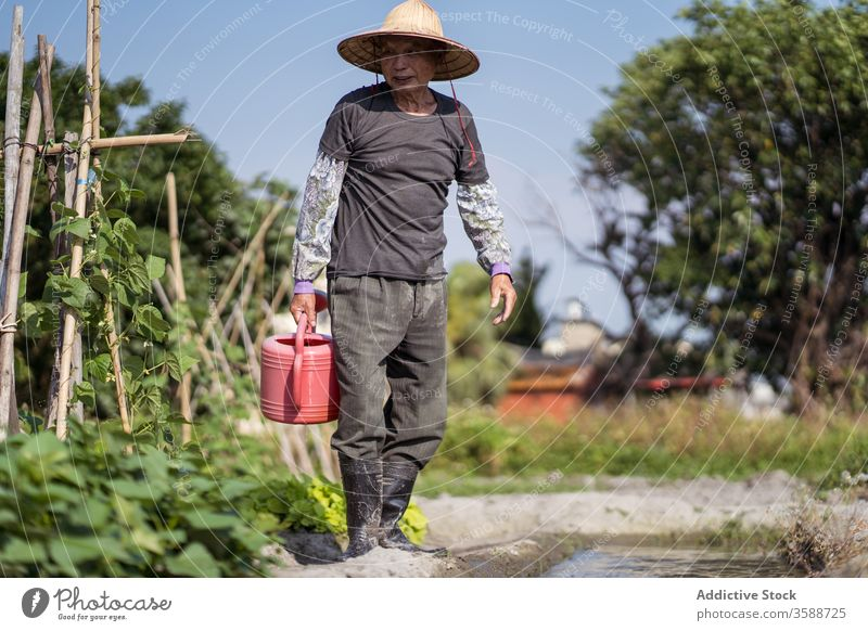 Middle aged ethnic farmer filling red watering can with brook water while working in garden in hot day man watering pot plant agriculture care creek cultivate