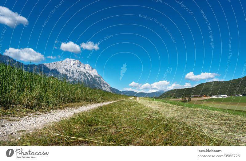 Path trough agriculural meadows in Austrian Alps, Mieminger Plateau, Tyrol, Austria landscape mountains sky austria nature path summer mieming green