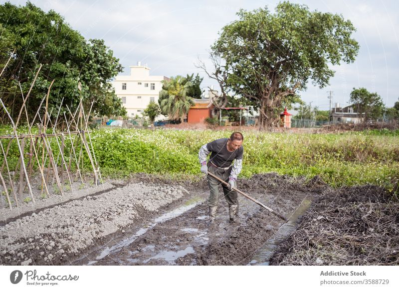 Diligent ethnic farmer cultivating soil with hoe before planting cultivate garden man agronomy agriculture work wet plantation equipment water tool orchard