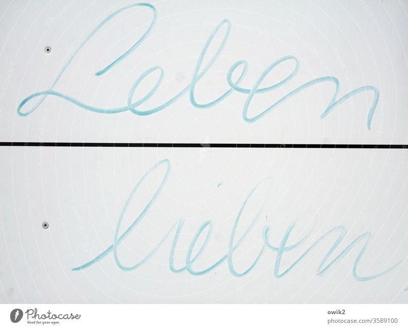 communication sign Letters (alphabet) words Life love added cursive Spontaneous Positive encourage sb. Felt-tipped pen Characters Colour photo Signage Blue Word