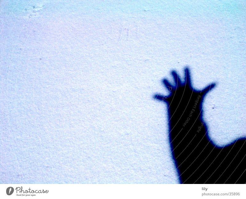 Hand Sun Snow Salutation