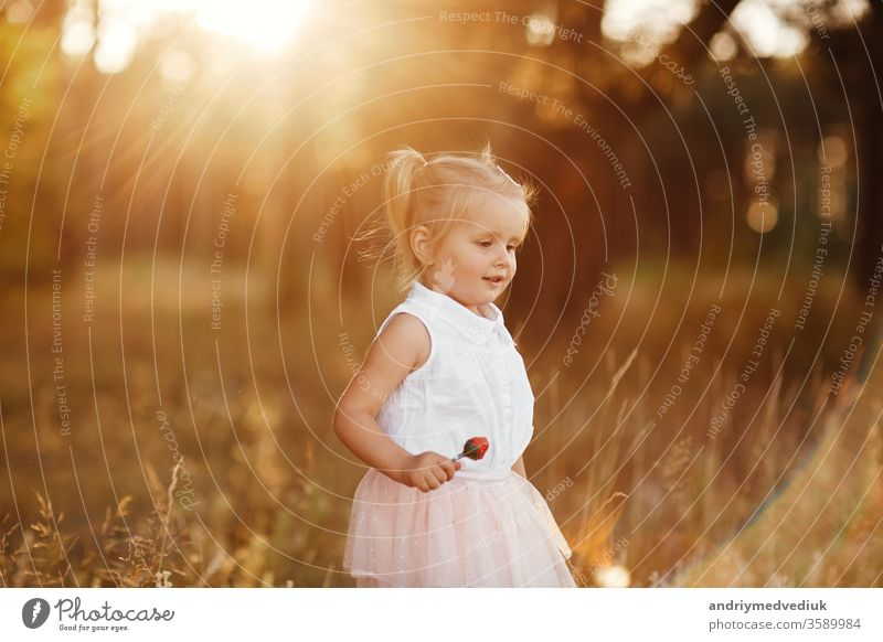 The girl walks in the park at sunset. nice little baby in a pink skirt child portrait spring summer serious cute sad kid beautiful background grass tails two