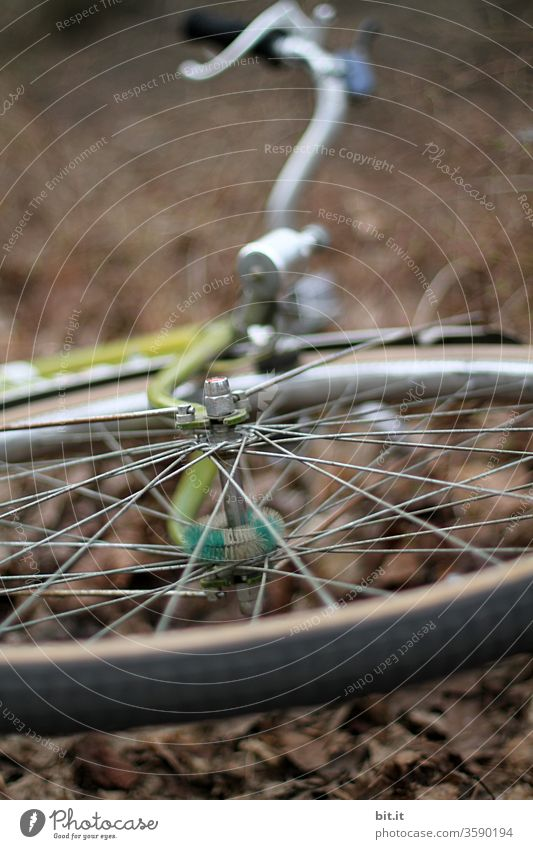 Front tire, wheel hub, handlebars, dynamo from the bicycle from below with weak depth of field. Stolen, stolen wheel lies left lying on the brown autumnal ground. Overturned bike, after accident, fall, tipping over on the side lying in autumn.