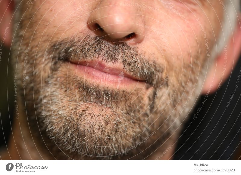 old I er Facial hair Masculine Mouth Lifestyle Gray bearded Hair care Designer stubble Gray-haired Man Face Lips Beard Nose Tip of the nose Chin Skin Aging Age