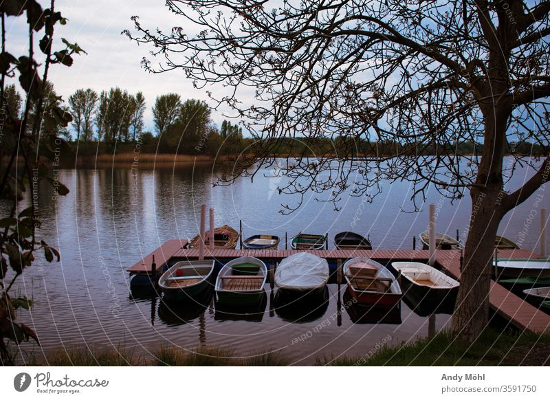 the boats lie lonely at the jetty Water Hiking Forest Summer To go for a walk Exterior shot nikonic Landscape Photography Sky huts Sunday Trip Lake already Calm