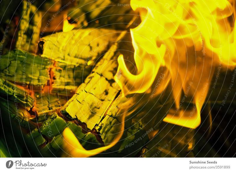 Logs burning in a bbq fire fuel sharing roast brick warm spark chop red coal camp yellow temperature bright carbon friendship bonfire orange celebration