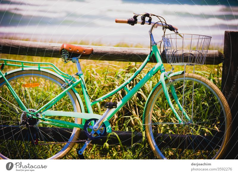 A ladies' bicycle leaning against a wooden beam, with fresh greenery along the shore and the sea in the background. Bicycle Movement Exterior shot Colour photo