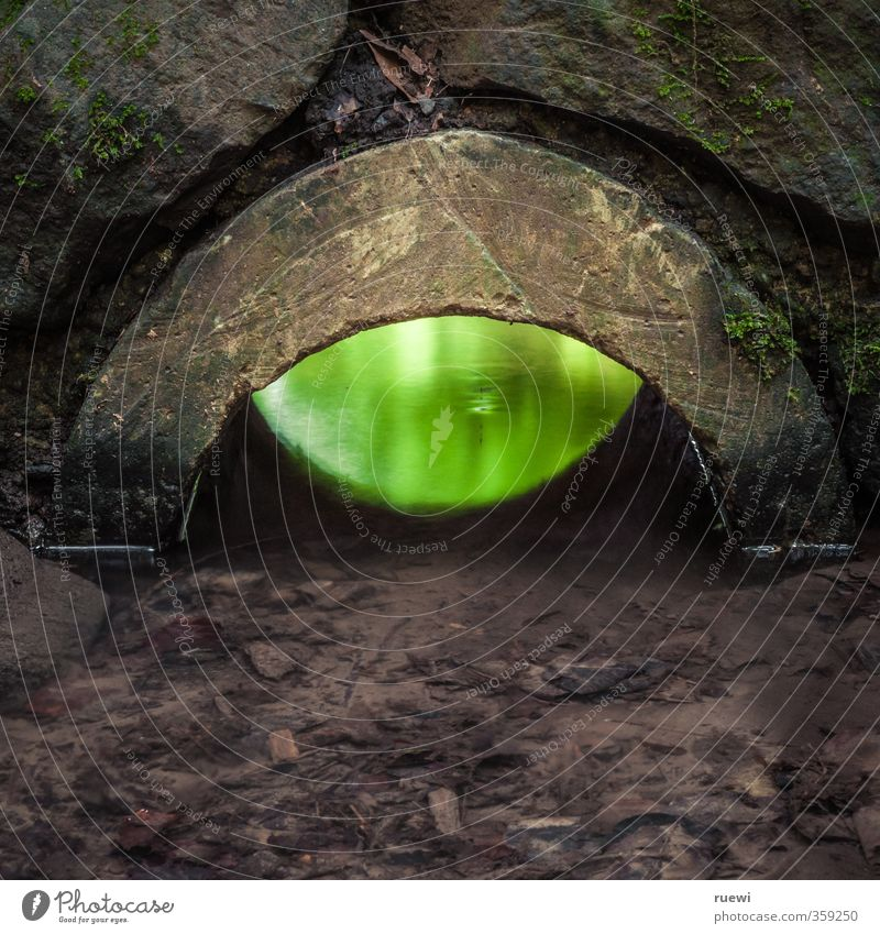 Green Water Dark Environment Eyes Wall (building) Wall (barrier) Architecture Stone Exceptional Brown Glittering Illuminate Wet Construction site Agriculture
