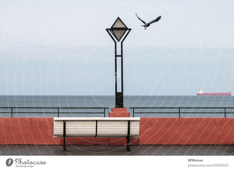 Lake view with bench, ship and crow lake view Ocean Crow Bench silent Lantern Exterior shot Coast Vacation & Travel Calm Relaxation Water Health resort
