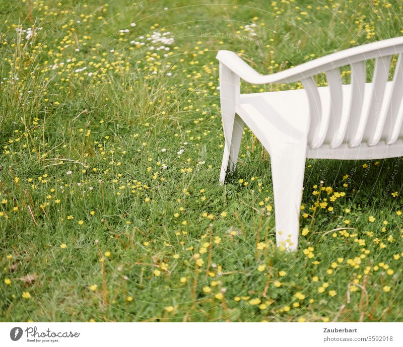 White plastic garden bench stands on a meadow with yellow flowers Bench Garden bench Meadow Grass Yellow rest Sit down green Plastic Relaxation Break Calm Park