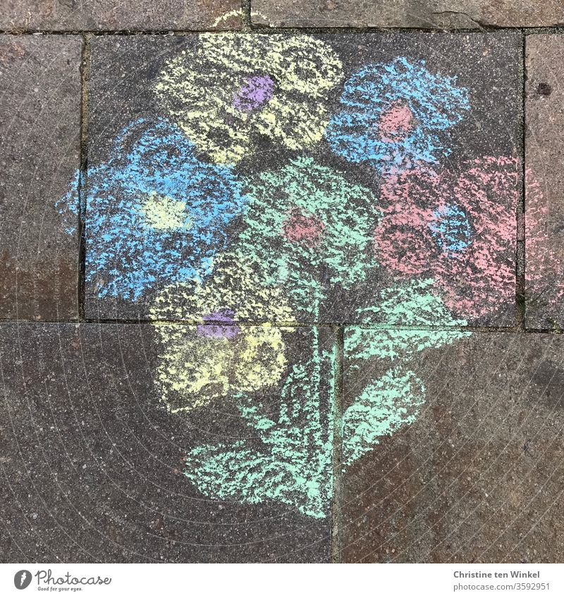Bouquet of flowers painted with street crayon on natural stones variegated Painted street-painting chalk Street painting Painting (action, artwork) Chalk