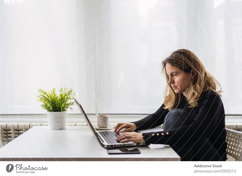Remote employee working with laptop at home woman using online remote busy casual serious table electronic internet connection read female workplace freelance