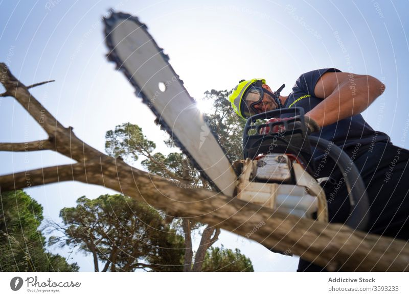 Fireman with chainsaw cutting tree branch woodcut forest fireman firefighter lumberjack sunny male blue sky uniform protect equipment work professional job