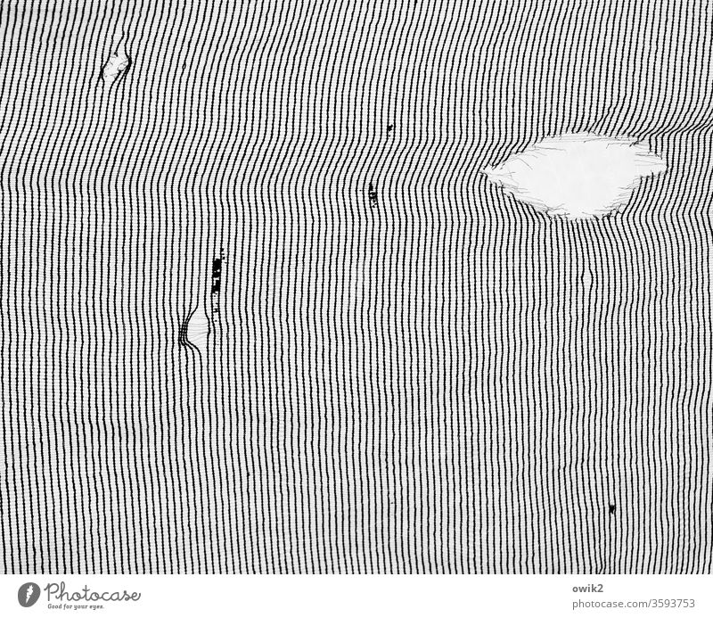 texture Pattern structure lines Black White Parallel Many Unclear puzzling Thin Arrangement Consistent Structures and shapes Abstract Deserted Detail Design