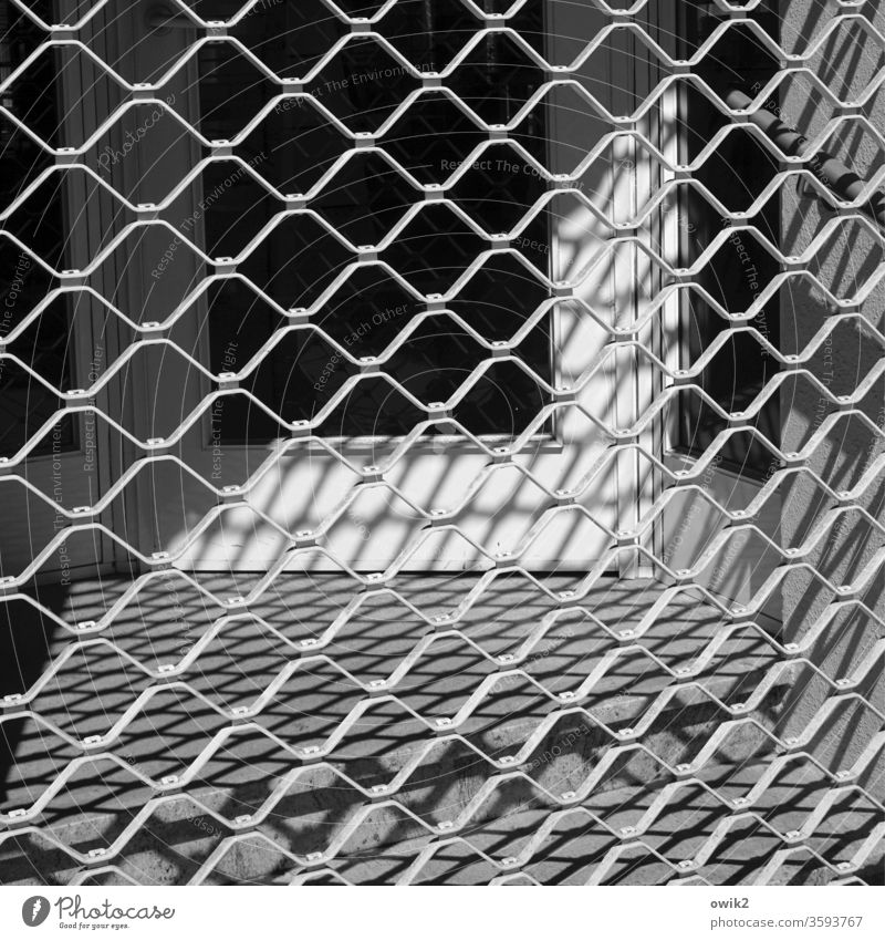 Border Grating Architecture Fence Light Macro (Extreme close-up) Things Exterior shot Barrier Metal Structures and shapes Protection Pattern Bans Wall (barrier)